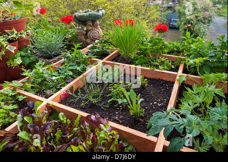 Square foot gardening by planting flowers, herbs and vegetables in wooden box on balcony - Stock Photo