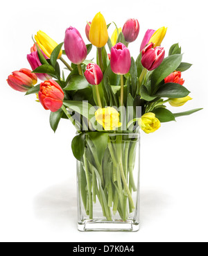 A beautiful flower arrangement of colorful Tulips. - Stock Photo