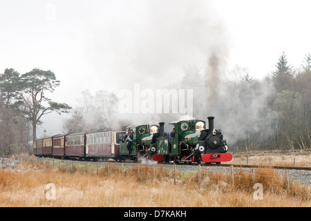 A steam locomotive pulling a passenger train of the Ffestiniog Railway on the Welsh Highland Line Railway, Wales - Stock Photo