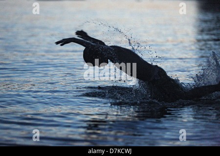 Bolsena, Italy, silhouette, boy swims in a lake in the evening - Stock Photo