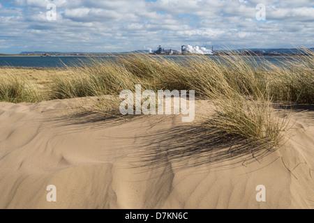 View over dunes at Teesmouth Natural Nature Reserve near Seaton Carew, Hartlepool, England, UK - Stock Photo