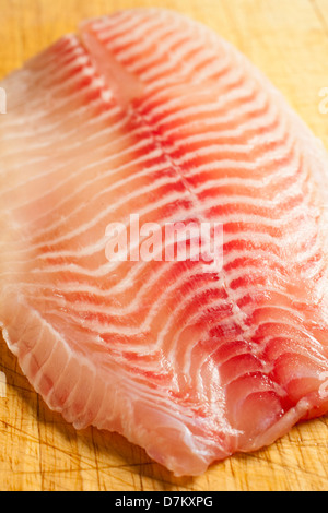 fresh raw tilapia fillets - Stock Photo