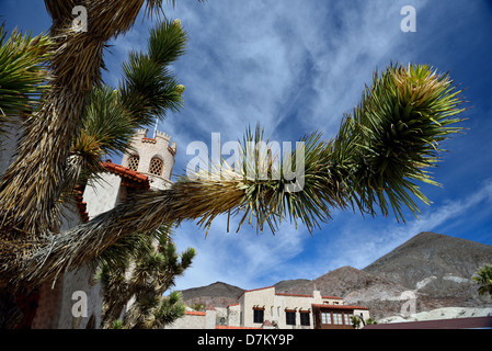 Joshua tree cactus in front of Scotty's Castle. Death Valley National Park, California, USA. - Stock Photo