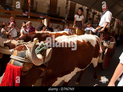 Olite Vintage celebration. Navarre. Spain - Stock Photo