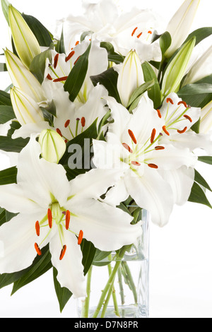White Lily flowers in a vase on a white background - Stock Photo
