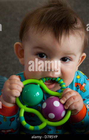 baby boy chewing on play toy - Stock Photo