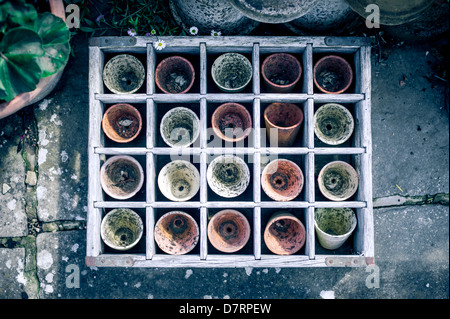 A box containing old used small terracotta plant pots used for planting seeds. - Stock Photo