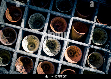 A box containing old used small plant pots used for planting seeds. - Stock Photo