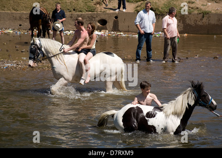 People and horses in the river at the Appleby Fair, an annual gathering of Gypsy and Traveller communities in Cumbria, - Stock Photo