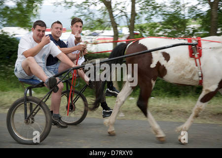 Men driving a horse and cart at the Appleby Fair, an annual gathering of Gypsy and Traveller communities in Cumbria, - Stock Photo