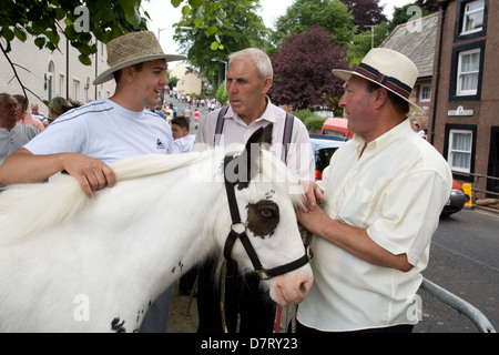 Horse sales at the Appleby Fair, an annual gathering of Gypsy and Traveller communities in Cumbria, England - Stock Photo