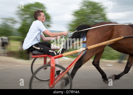 A speeding horse and trotting cart at the Appleby Fair, an annual gathering of Gypsy and Traveller communities in - Stock Photo