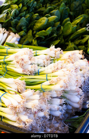 Fresh produce at the local Farmers Market. - Stock Photo