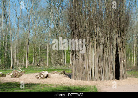 Westonbirt Arboretum 2000 year old coppiced small leaved lime tree and coppiced stem sculpture by Richard Harris. - Stock Photo