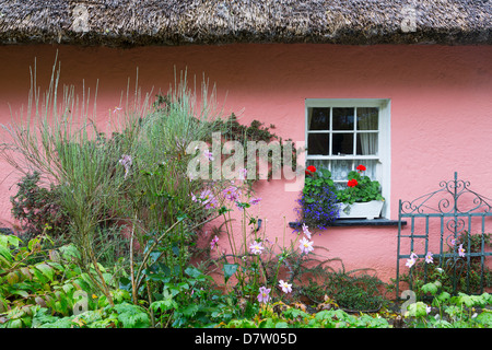 Golden Vale Farmhouse in Bunratty Castle and Folk Park, County Clare, Munster, Republic of Ireland - Stock Photo