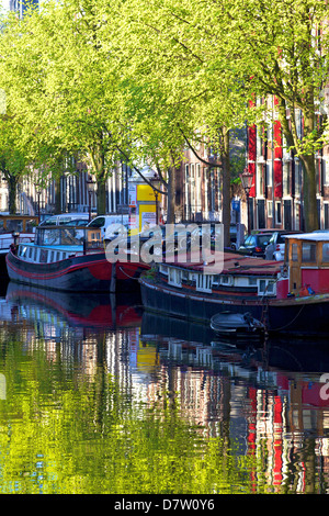 Houseboats on canal, Amsterdam, Netherlands - Stock Photo