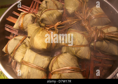 Steamed rice dumpling in lotus leaf, Hong Kong, China - Stock Photo