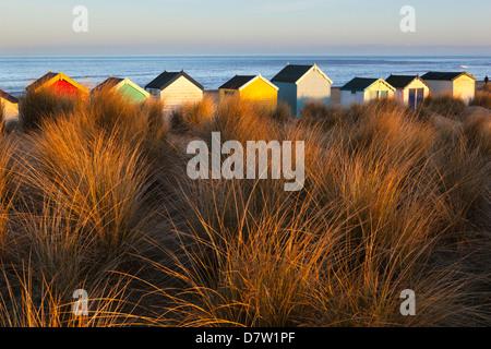 Beach huts amid sand dunes, Southwold, Suffolk, England, United Kingdom - Stock Photo