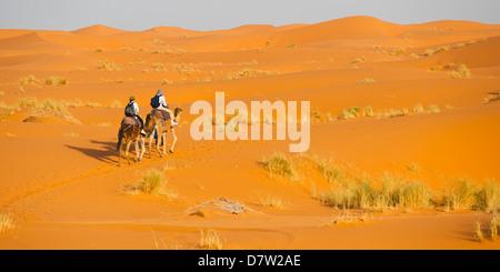 Tourist couple on a camel ride in Erg Chebbi Desert, Sahara Desert near Merzouga, Morocco, North Africa - Stock Photo