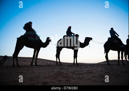Tourists silhouetted on a camel ride at night, Erg Chebbi Desert, Sahara Desert near Merzouga, Morocco, North Africa - Stock Photo