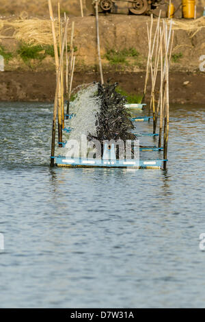 Bangtathen, Saphun Buri, Thailand. May 14, 2013. An aerator spins in a shrimp pond in Saphunburi. Thailand. Early - Stock Photo