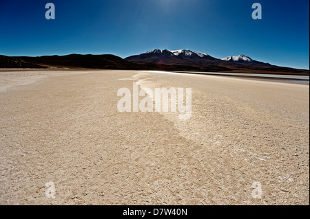At the edge of a salt lake high in the Bolivian Andes, Bolivia, South America - Stock Photo