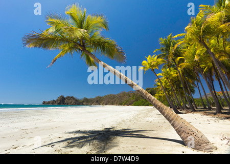 Beautiful palm fringed, white sand Playa Carrillo, Carrillo, nr Samara, Guanacaste Province, Nicoya Peninsula, Costa - Stock Photo