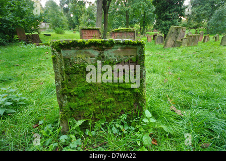 Mossy Hebrew writing on a grave in an old overgrown Jewish cemetery - Stock Photo
