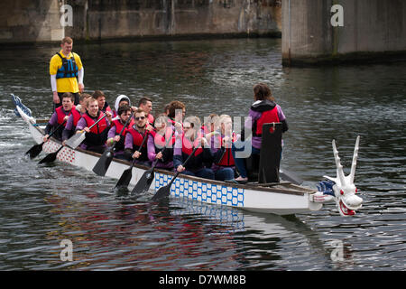Traditional dragon boat race, a lifestyle water team event at Wharf, Queens Dock, Liverpool.  Students from Lancaster - Stock Photo