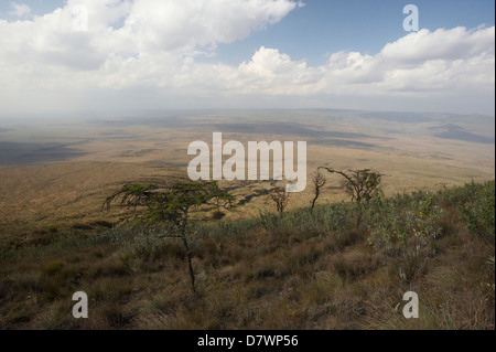 View of Great Rift Valley from Mount Longonot, Mount Longonot National Park, Nakuru, Kenya - Stock Photo