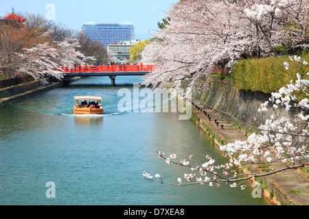 Cherry blossoms over canal, Kyoto - Stock Photo