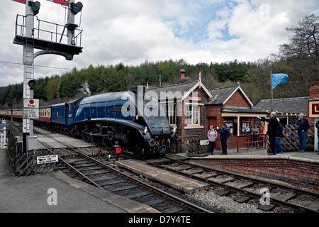 Steam Locomotive Sir Nigel Gresley enters Levisham Railway Station North Yorkshire England UK United Kingdom GB - Stock Photo