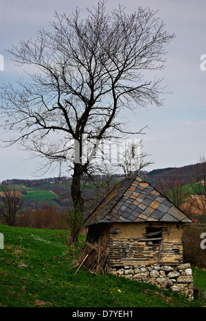 Abandoned old mountain cabin and leafless tree against stormy cloudy sky. - Stock Photo