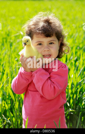 Little girl with goose chick. - Stock Photo