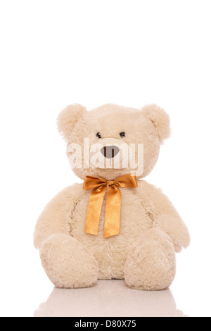 White teddy bear isolated on white background - Stock Photo