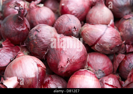 box of red onions - Stock Photo