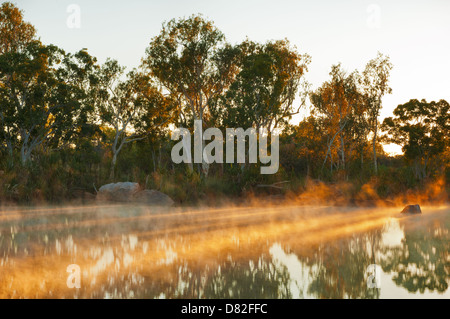 First morning sun beams on Manning River. - Stock Photo
