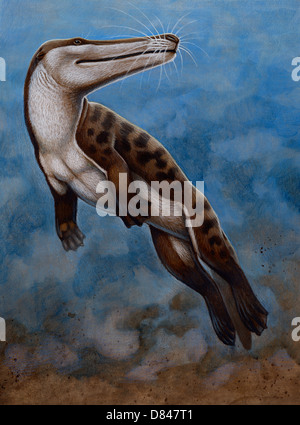 Ambulocetus natans, an early cetacean that lived in the Early Eocene epoch - Stock Photo