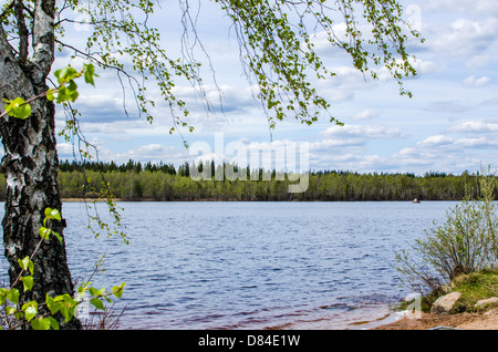 View over a lake at springtime in the province Smaland in Sweden - Stock Photo