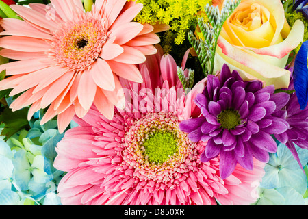 A close-up of a colorful bouquet of flowers. - Stock Photo