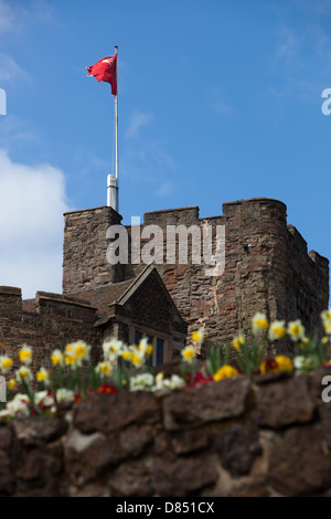Looking up towards Tamworth Castle, with the colourful Spring flowerbeds in the foreground. - Stock Photo