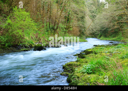 41,378.08473 Beautiful spring landscape of the Nestucca River, with low and wide-angle view of rapids flowing through - Stock Photo