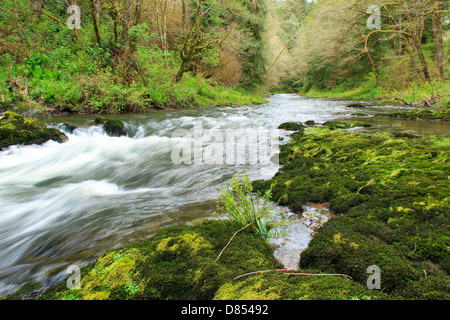 41,378.08521 Beautiful water landscape with low and wide-angle view of the Nestucca River rapids flowing through - Stock Photo
