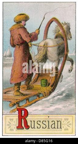 Russian Man Driving Horse Drawn Sleigh - Stock Photo