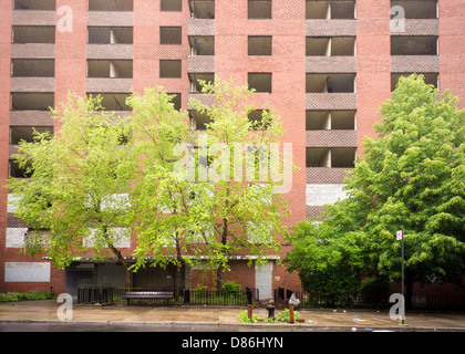 The empty massive NYCHA Prospect Plaza housing project complex in the OceanHill-Brownsville neighborhood of Brooklyn - Stock Photo