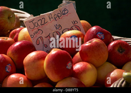 Jazz apples for sale on market stall - Stock Photo