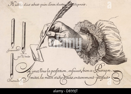Hand And Quill Pen - Stock Photo