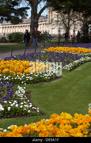 Royal Victoria Park gardens with Royal Crescent in the distance at Bath, Somerset UK in April - Stock Photo