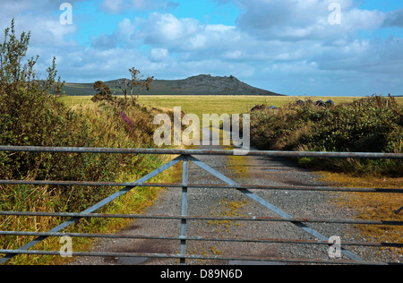 View through gate of Rough Tor or  Roughtor , Bodmin Moor Cornwall - Stock Photo