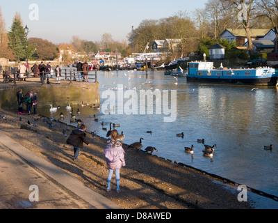 Twickenham riverside / over the River Thames looking towards Eel Pie Island - Stock Photo